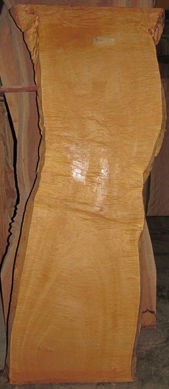 2010.6.逸品共木